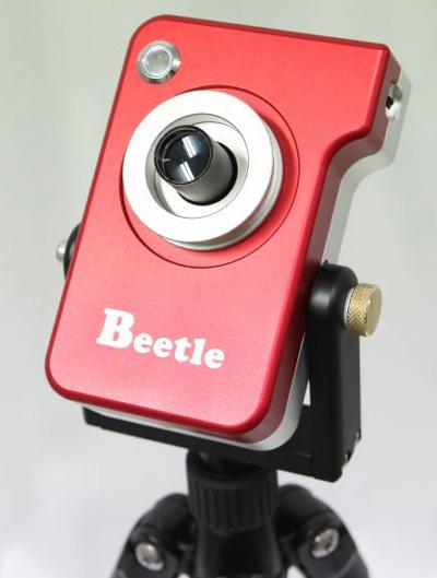 Beetle5